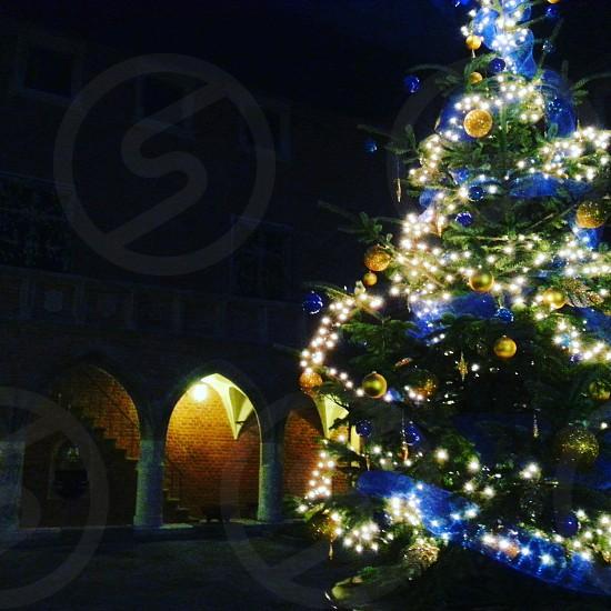 #christmas #christmastime #christmastree #krakow #poland #tree #lights #originalphoto #jagellonian #christmasballs #december #trip #cracovia #university photo