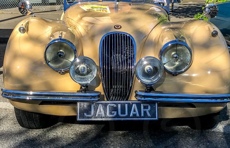 classic cars photo