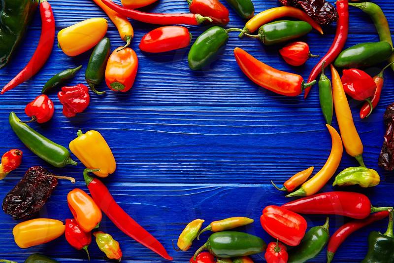 Mexican hot chili peppers colorful mix habanero poblano serrano jalapeno blue background photo