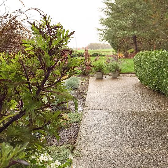 Rainy Day View photo