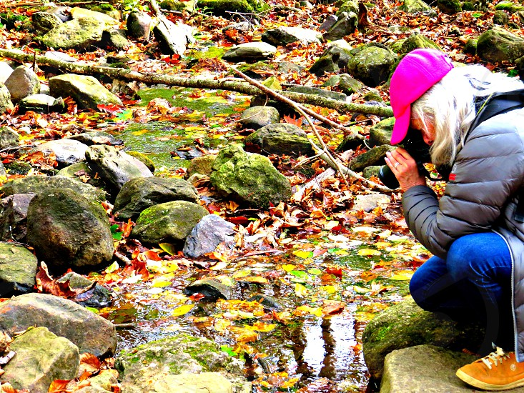 Photographer getting close up shot of fall leaves in stream water photo