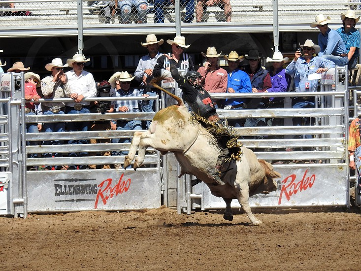 Annual Ellensburg Labor Day Weekend Rodeo photo