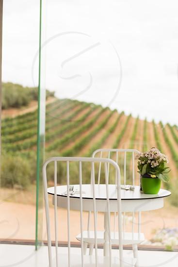 stellenbosch winery photo