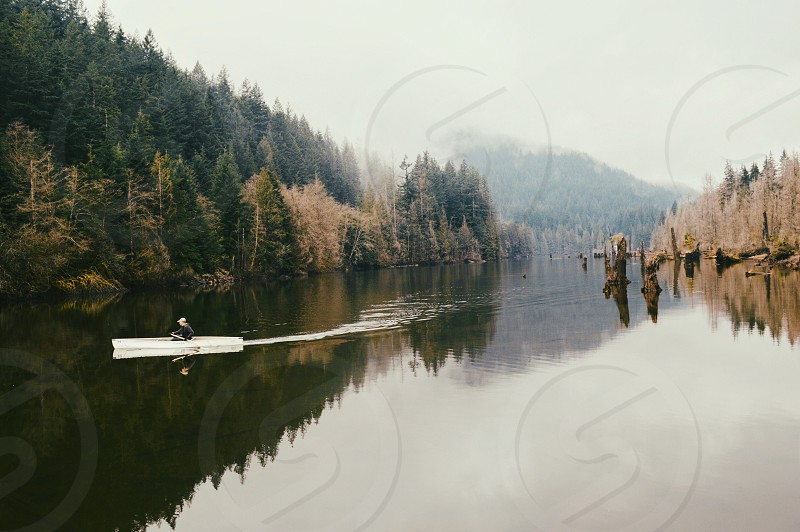 white water craft traveling on calm body of water near tall green trees during daytime photo