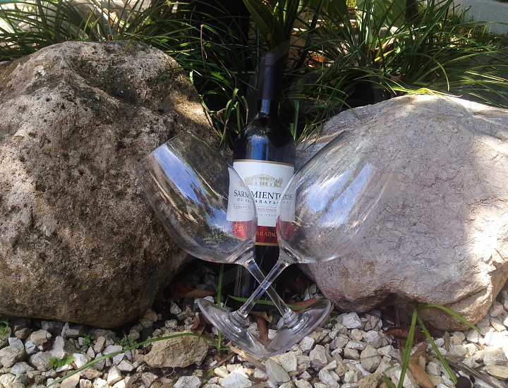 Romantic wine picninc  photo