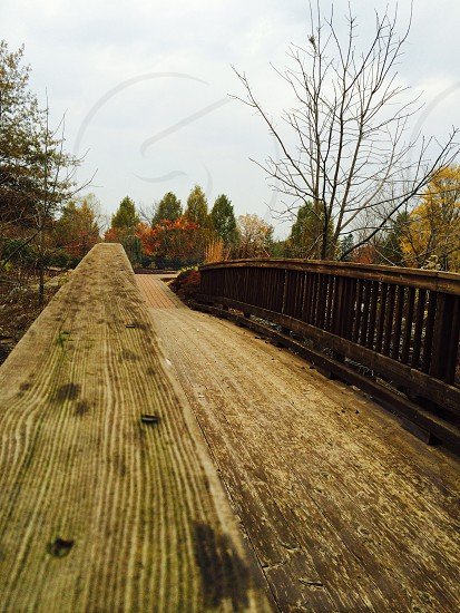 Wooden bridge in Fall. photo