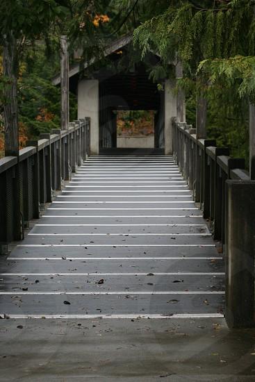 The long walk across the bridge photo