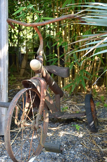 Vintage rusted tricycle photo