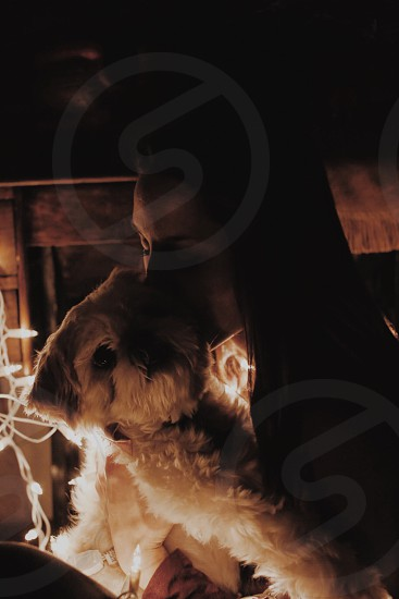 low light photography of woman kissing shih tzu with a string lights in the background photo