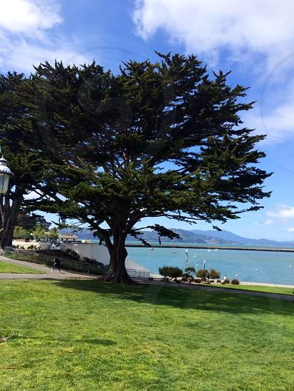 SFO waterfront photo