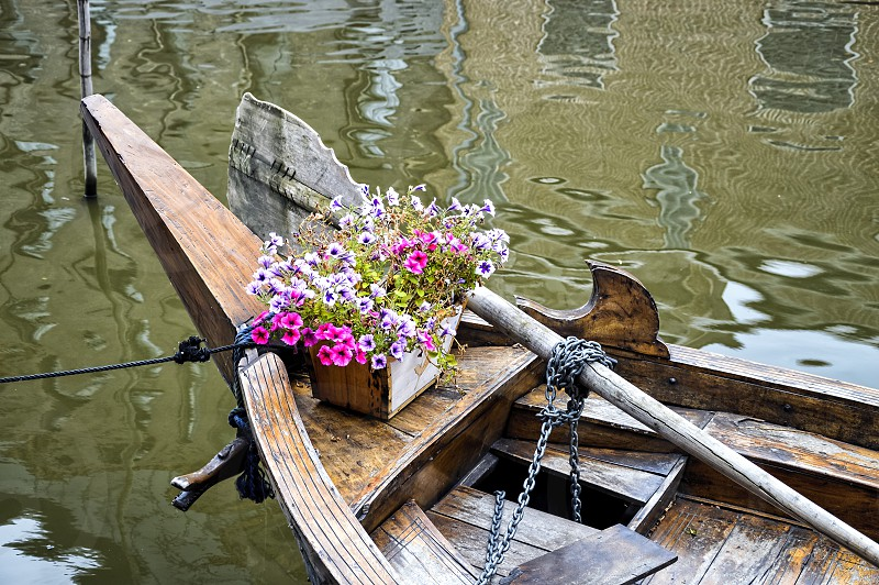 Flowers boat channel and reflections photo