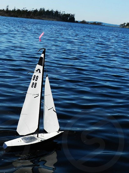Remote control boat racer photo