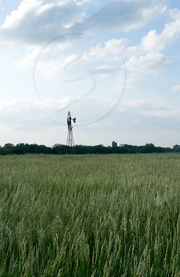 windmill on green field photo