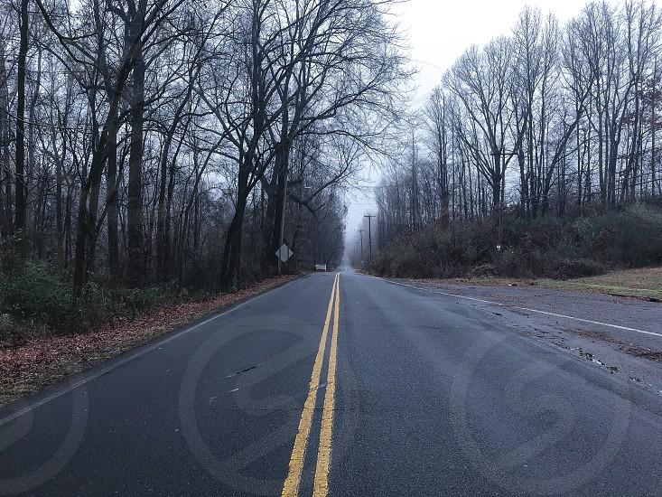 Street treesscenescenicbeautifulcloudscloudy  photo