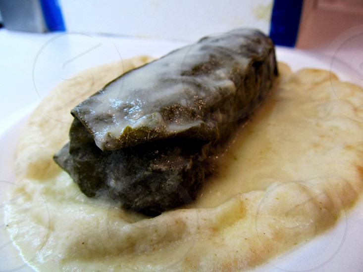 Giant dolma on base of hummus photo