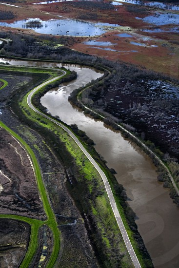 Minor Slough in the California Delta the west's largest estuary that provides water for 23 million Californians. photo