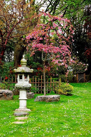 Kyoto Garden London photo