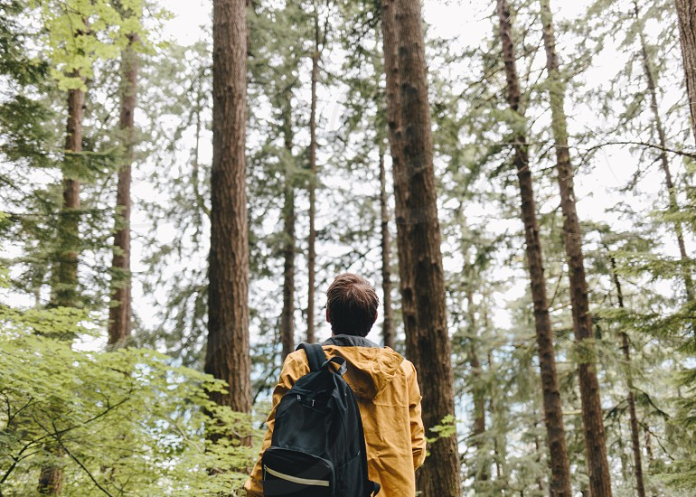 man in yellow jacket wearing back pack in middle of forest during daytime photo