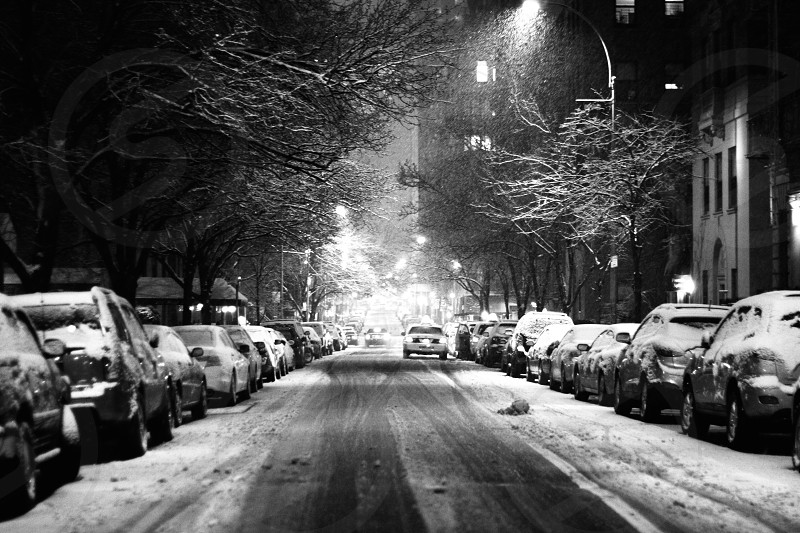 Snow in New York photo