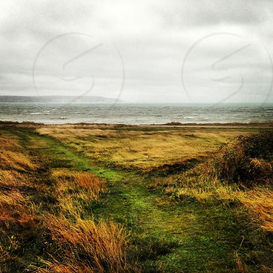 Wild coastline photo
