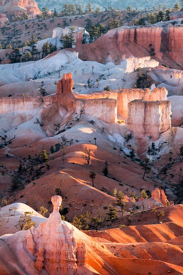 Scenic View of Bryce Canyon photo