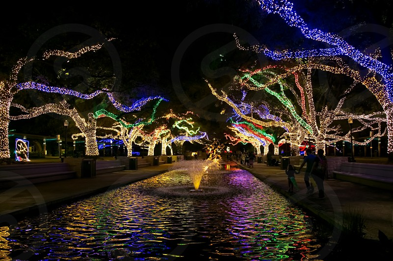 Zoo lights at the Houston Zoo in Houston Texas for Christmas celebrations.  photo