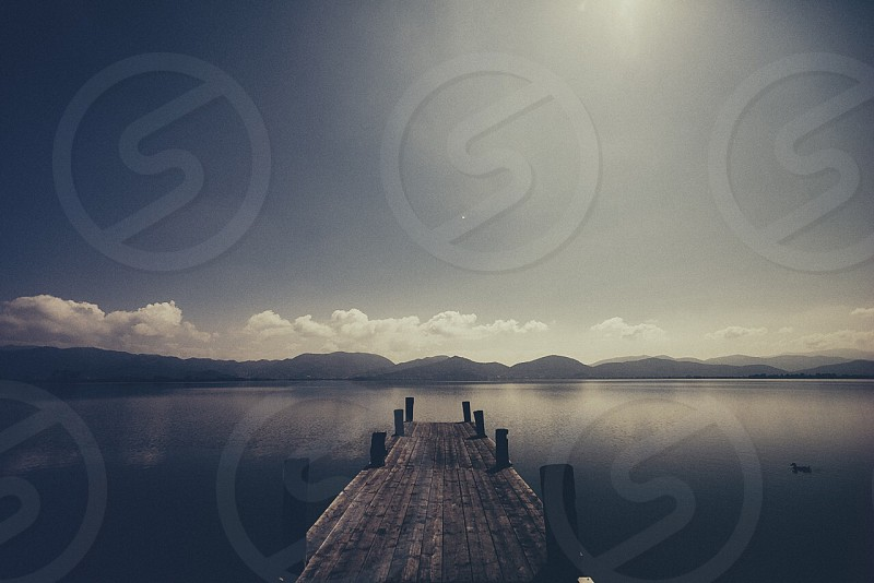 brown wooden deck on body of water photo