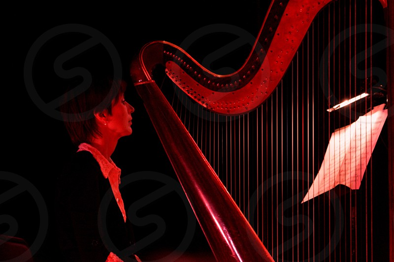 Concert harf musician instrument musician music stage woman harfer profile classical  photo