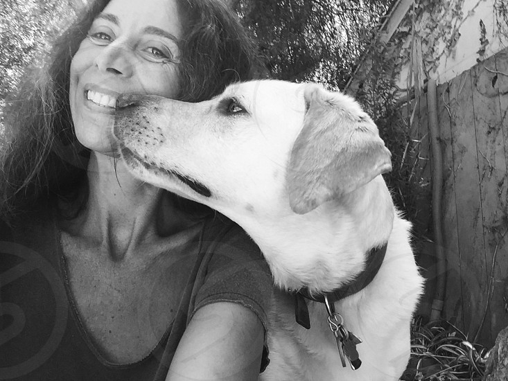 grayscale photo of woman with adult Labrador retriever photo