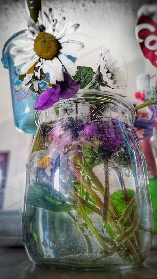 #springtime #springcolours #springflowers #composition #stilllife #closeup #creative #ambient photo