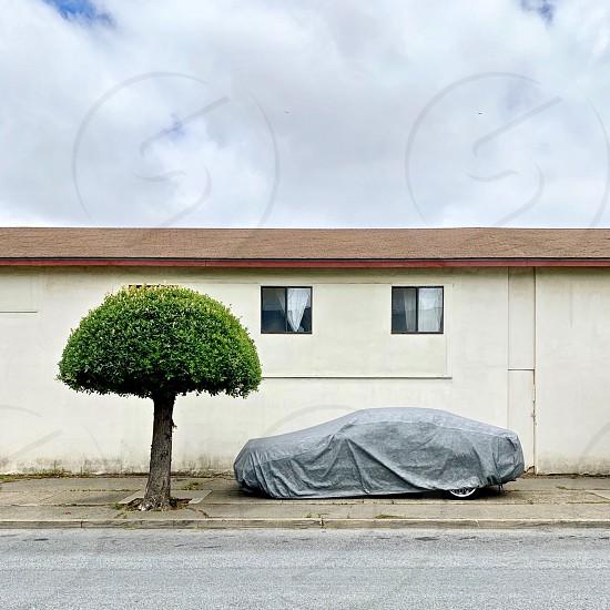 Covered car tree photo