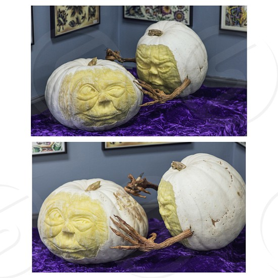 white green halloween pumpkins on purple textile near wall paintings photo