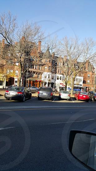 COMMONWEALTH AVE BOSTON MA photo
