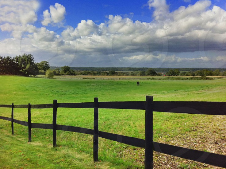 grass fields with long black wooden fence photo