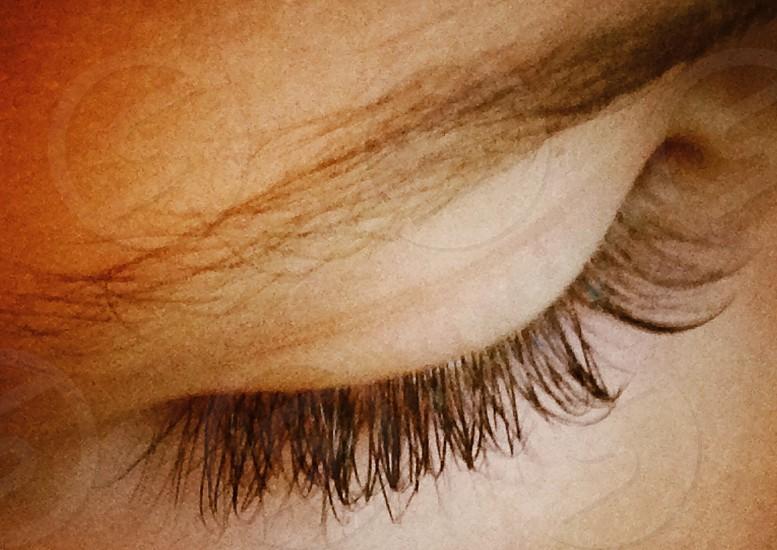 human eyebrow photo