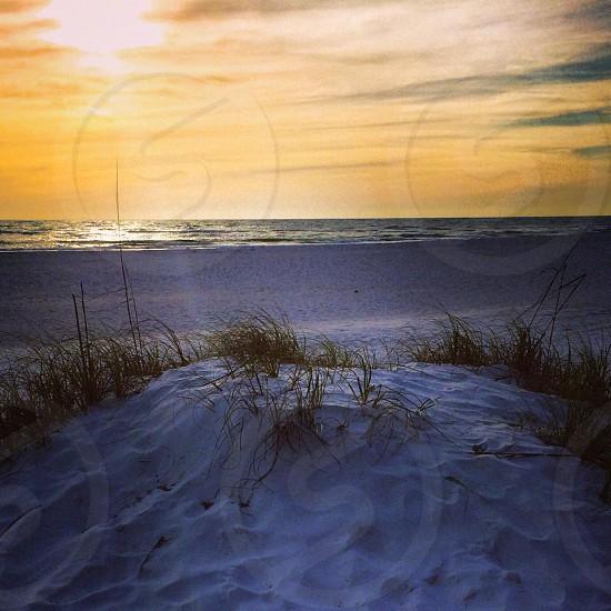 Life's a Beach photo