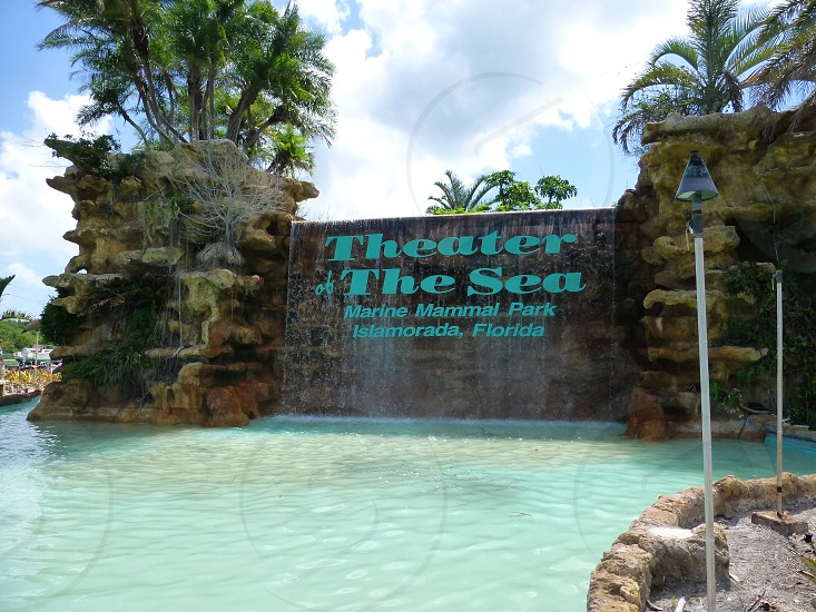 Theater of the Sea photo