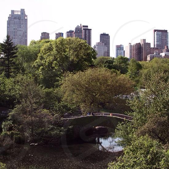 grey concrete bridge near green trees photo