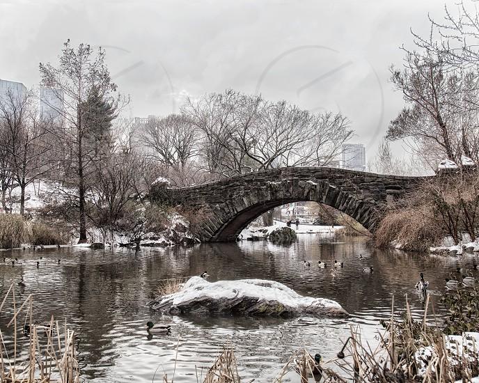 The footbridge over the pond in New York's Cental Park.  Winter scene.  Snow. photo