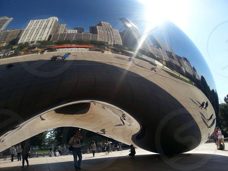The Chicago Bean photo