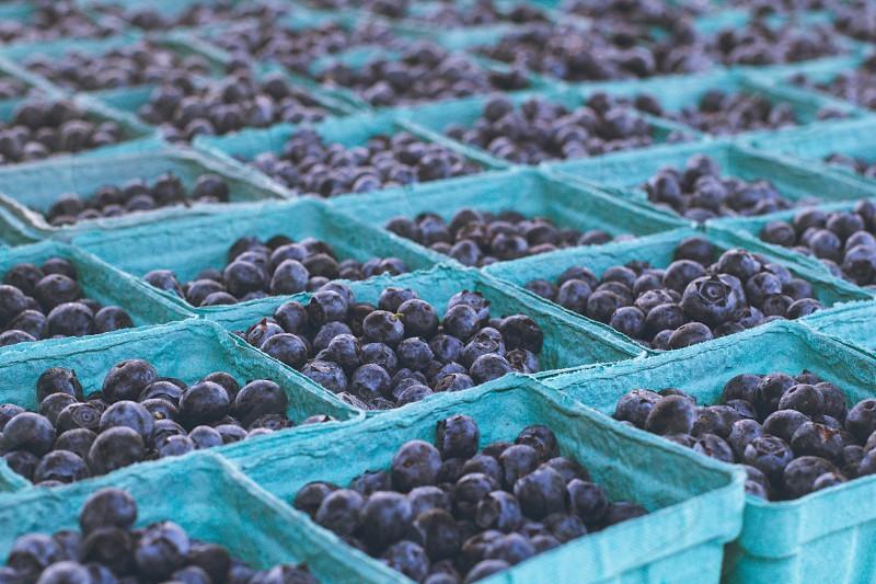blueberries.  photo