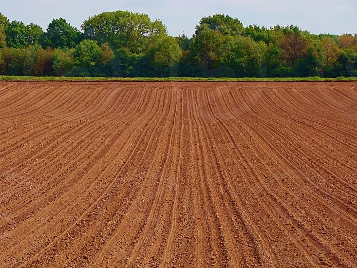 #dutch #landscape #agroculture #farming #eco photo
