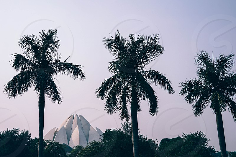 Lotus Temple was completed in 1986. Notable for its flowerlike shape it serves as the Mother Temple of the Indian subcontinent and has become a prominent attraction in the city photo