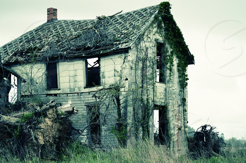 The lost story of an abandoned country home standing by the field of a forgotten farm.  It's once prized lattice roof beginning to cave with only the snake-like vines crawling up her sides to support the once magnificent structure. photo