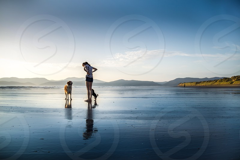 woman and dogs walking on beach photo