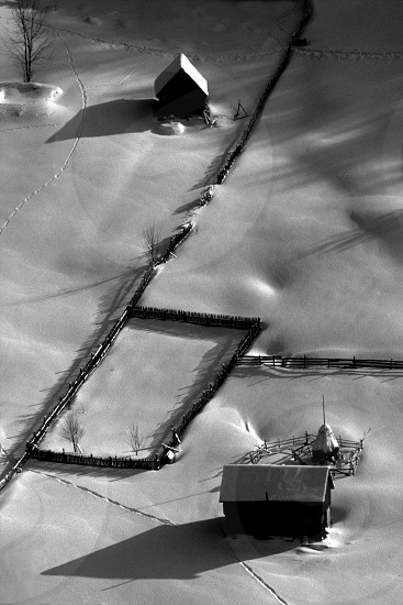 houses on snowy ground  photo