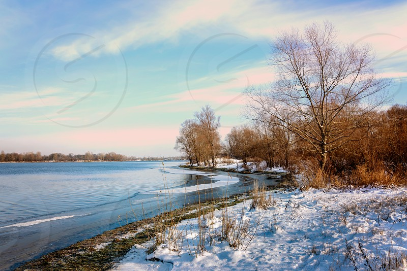 Winter trees  close to the frozen Dnieper river. There are  cloudy in the light blue sky snow and ice on the grass photo