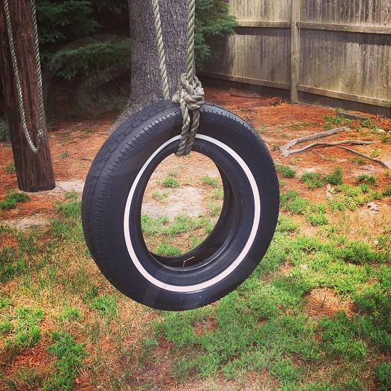 Empty tire swing backyard  photo