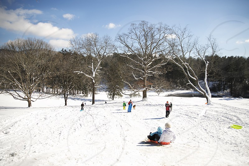 Families sledding in the Blue Ridge Mountains of North Carolina photo