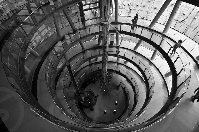 people walking on spiral staircase photo